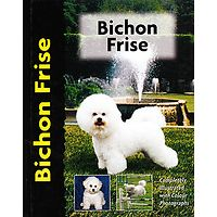 Bichon Frise - Pet Love